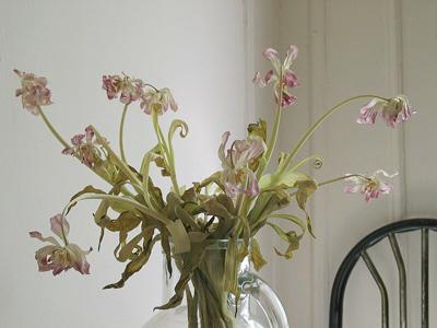 dead_flowers1.jpg